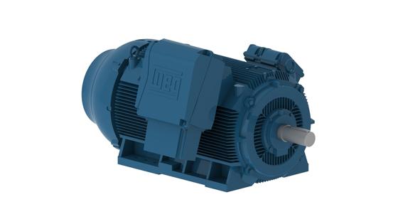 Motor Trifásico de Indução Hgf